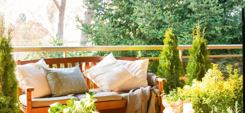 arboles-para-terraza-atico-ideas-para-instalar-en-tu-terraza