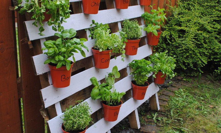 casetas-de-madera-baratas-para-jardin-consejos-para-decorar-el-jardin