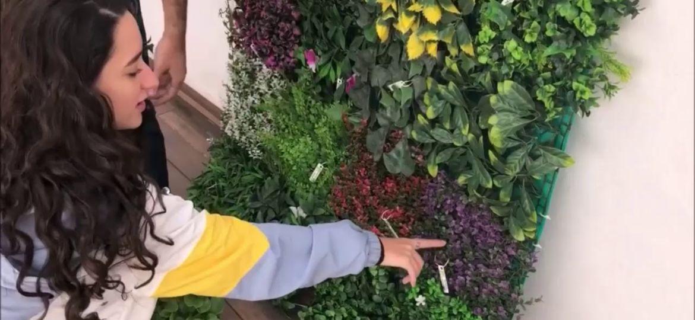 como-hacer-jardin-vertical-artificial-trucos-para-mantener-el-jardin