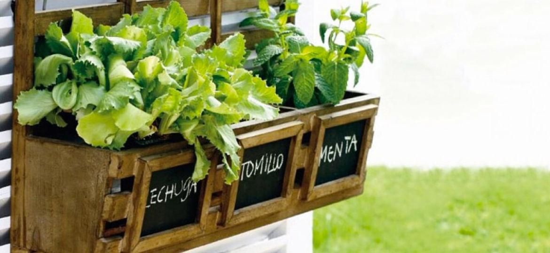 como-hacer-un-huerto-en-el-jardin-tips-para-decorar-el-jardin
