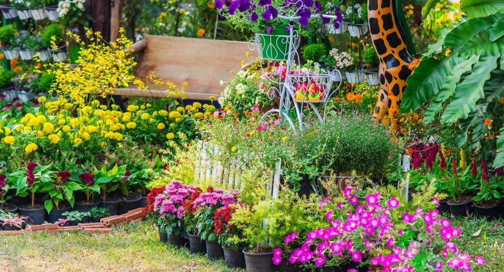 decoracion-de-jardin-exterior-consejos-para-mantener-tu-jardin