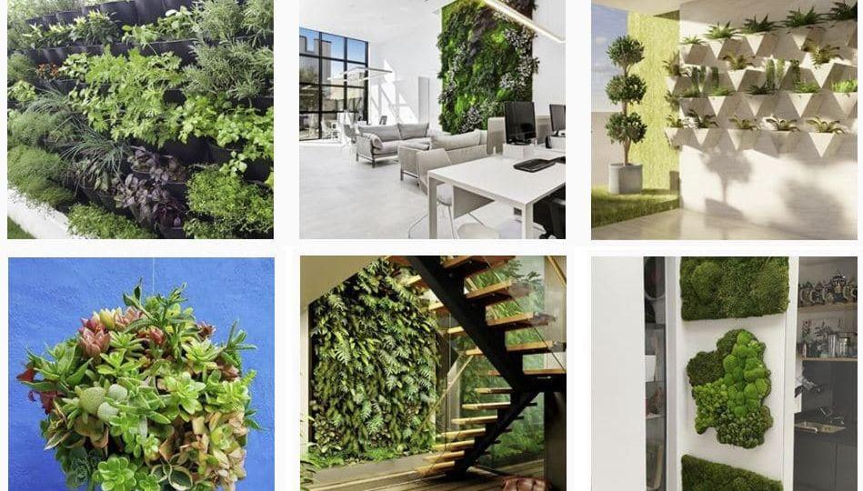 decoracion-jardin-exterior-consejos-para-comprar-el-jardin