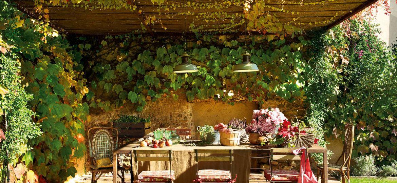 flores-enredaderas-ideas-para-instalar-en-la-terraza