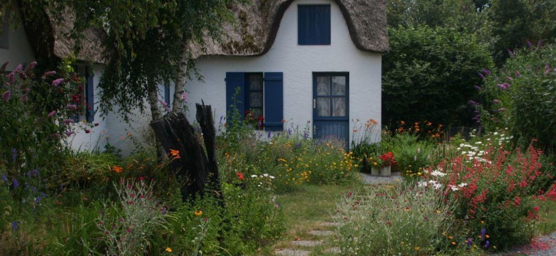 insecticida-para-mosquitos-en-el-jardin-ideas-para-mantener-tu-jardin