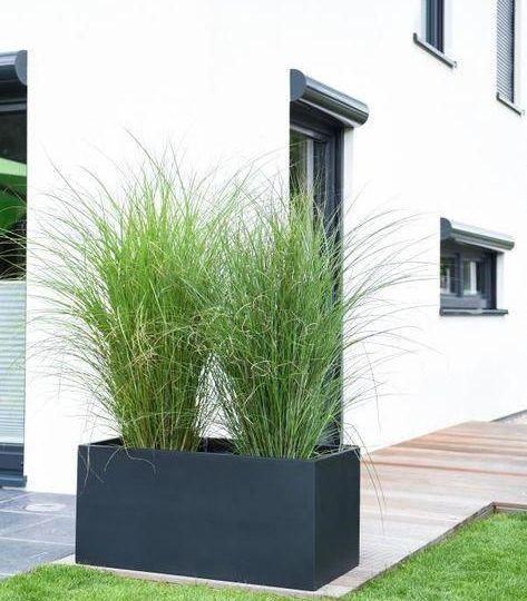 jardineras-de-fibra-de-vidrio-tips-para-comprar-tu-jardin