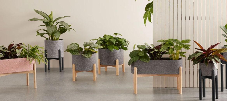 jardineras-de-piedra-artificial-tips-para-decorar-el-jardin