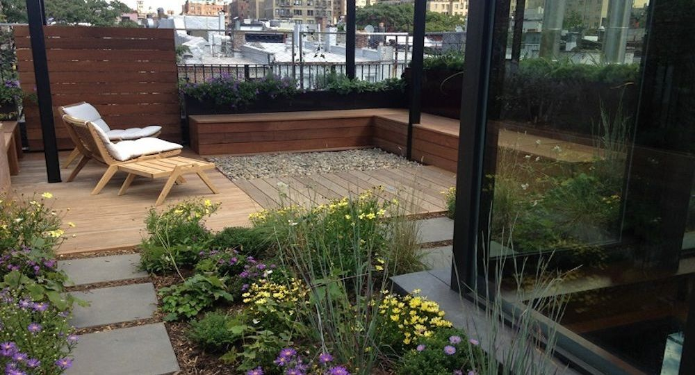 jardines-modernos-con-palmas-tips-para-mantener-el-jardin