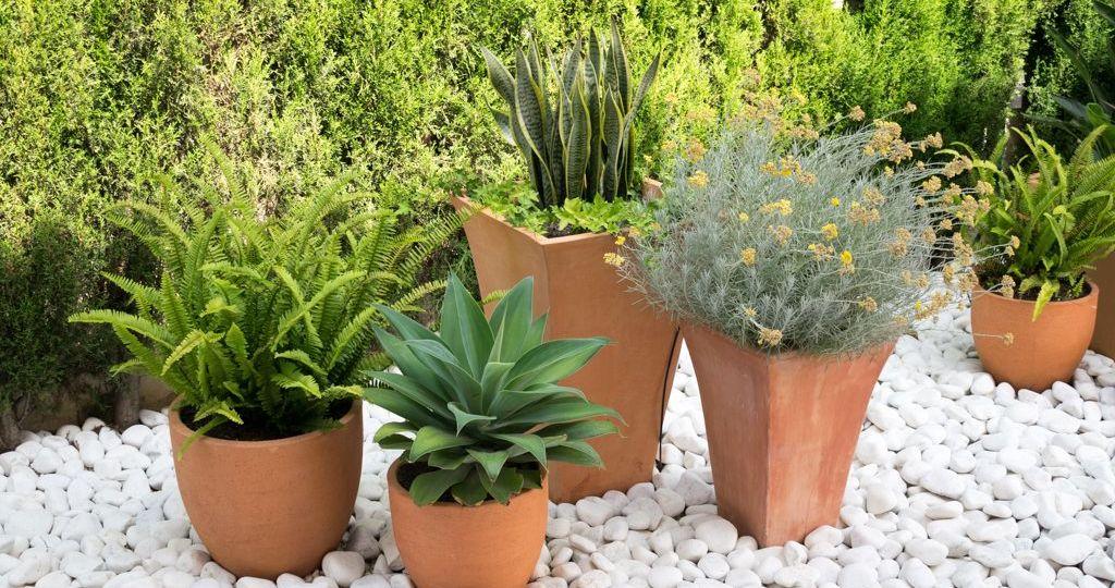 macetas-originales-para-el-jardin-tips-para-montar-el-jardin