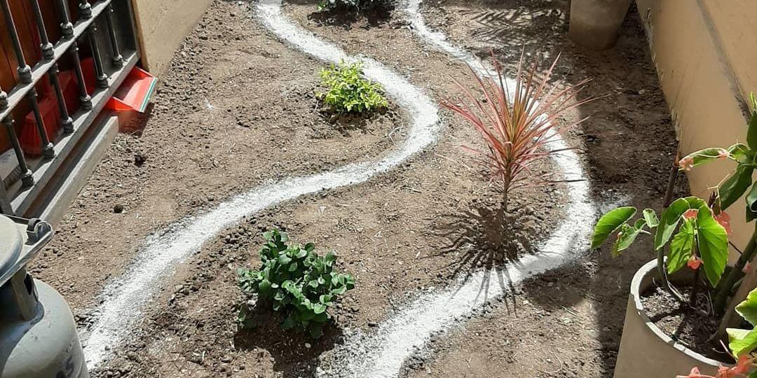 piedra-blanca-para-jardin-tips-para-montar-tu-jardin