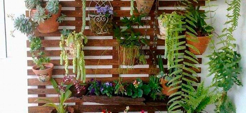 plantas-de-exterior-con-flor-todo-el-ano-ideas-para-montar-en-la-terraza