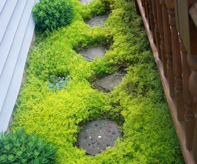 pozos-de-jardin-decorativos-tips-para-mantener-el-jardin