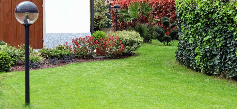 tienda-jardineria-valencia-ideas-para-mantener-tu-jardin